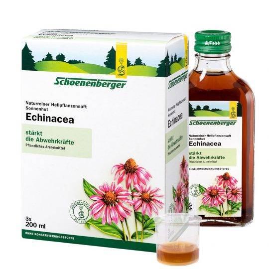 Echinacea 600 ml